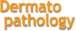 Logo Dermatopathology